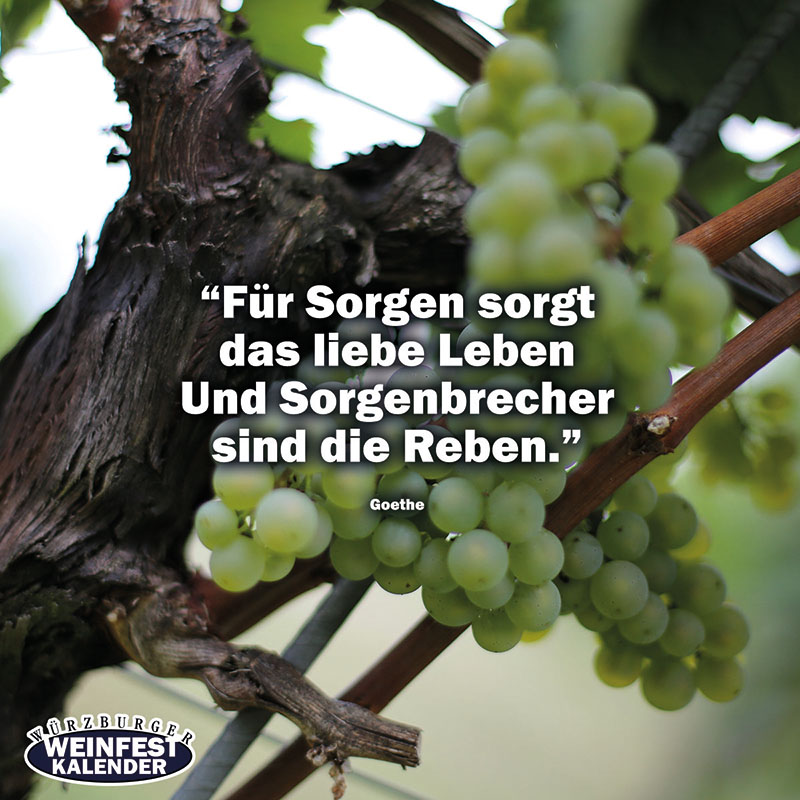 Weinzitate Weinfest-Vorlage-Facebook-zitate-02