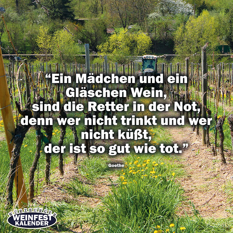 Weinzitate Weinfest-Vorlage-Facebook-zitate-04